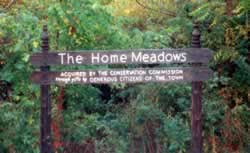 The Home Meadows Sign