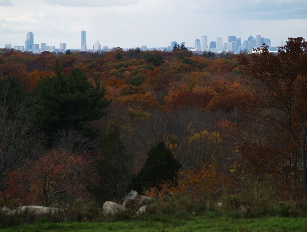 View of downtown Boston from Weir River Farm